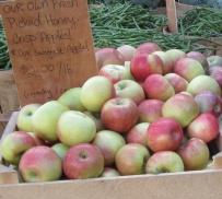 apple honey crisp