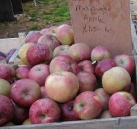 apple melrouge