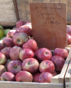 apple spartan