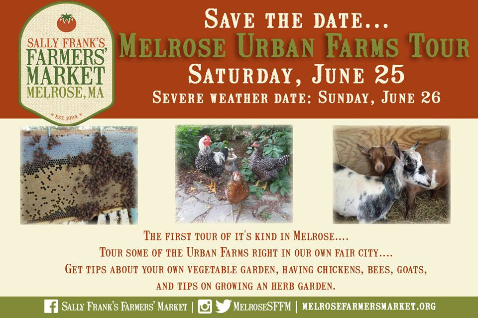 Do You Have A Vegetable, Fruit Garden Or Farm Animals You Are Raising That  You Would Like To Showcase In Our Urban Farms Tour? The Very First Melrose  ...